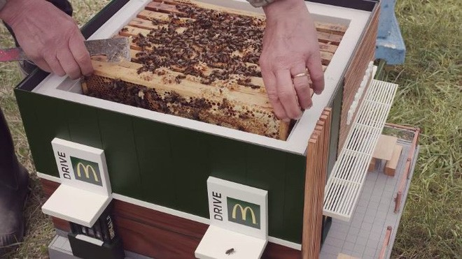 mcdonald's xây nhà cho những chú ong