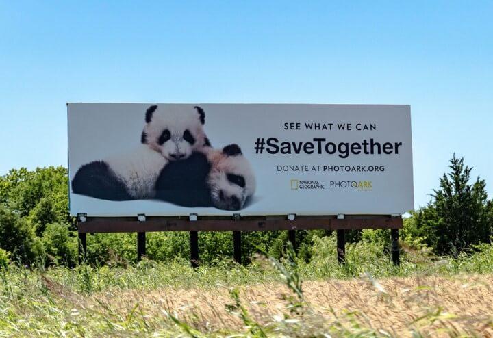 OAAA quảng cáo OOH bảo vệ động vật